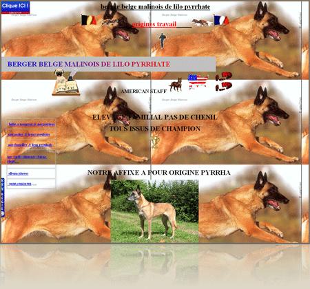 Croquettes pour chien best quality thermostatic steam trap and long - Comparatif croquettes chien 60 millions ...